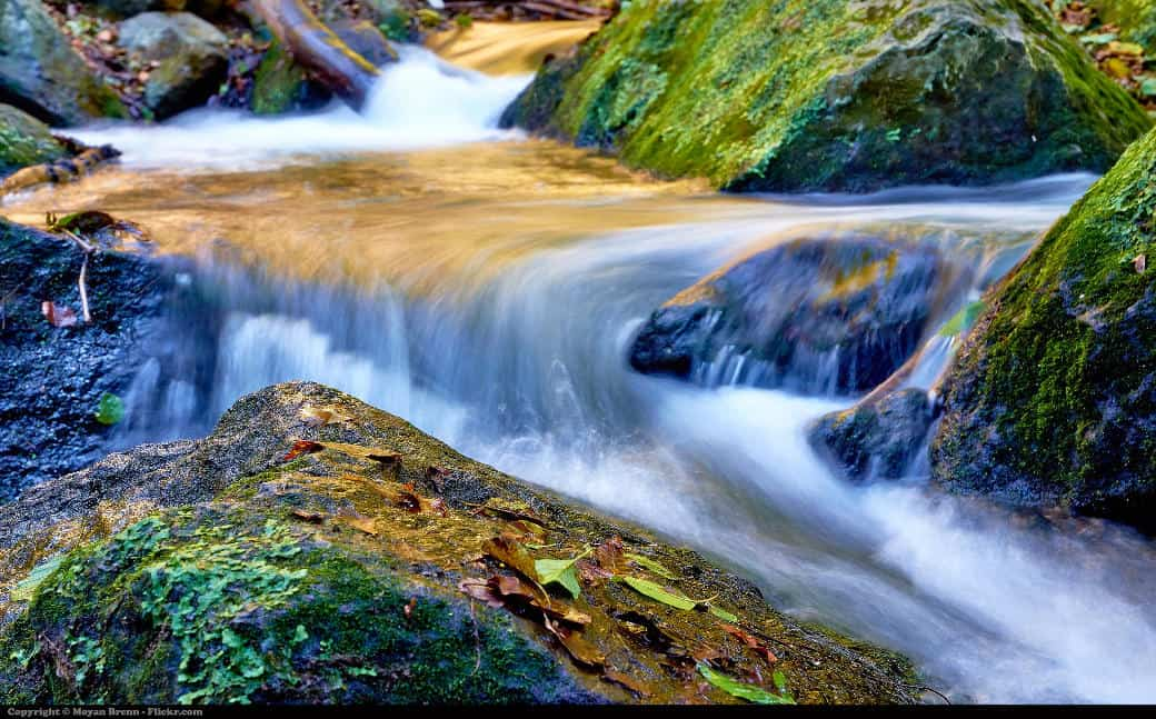 soothing environment with stream