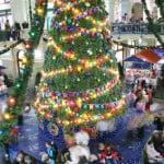 department store tree near Christmas