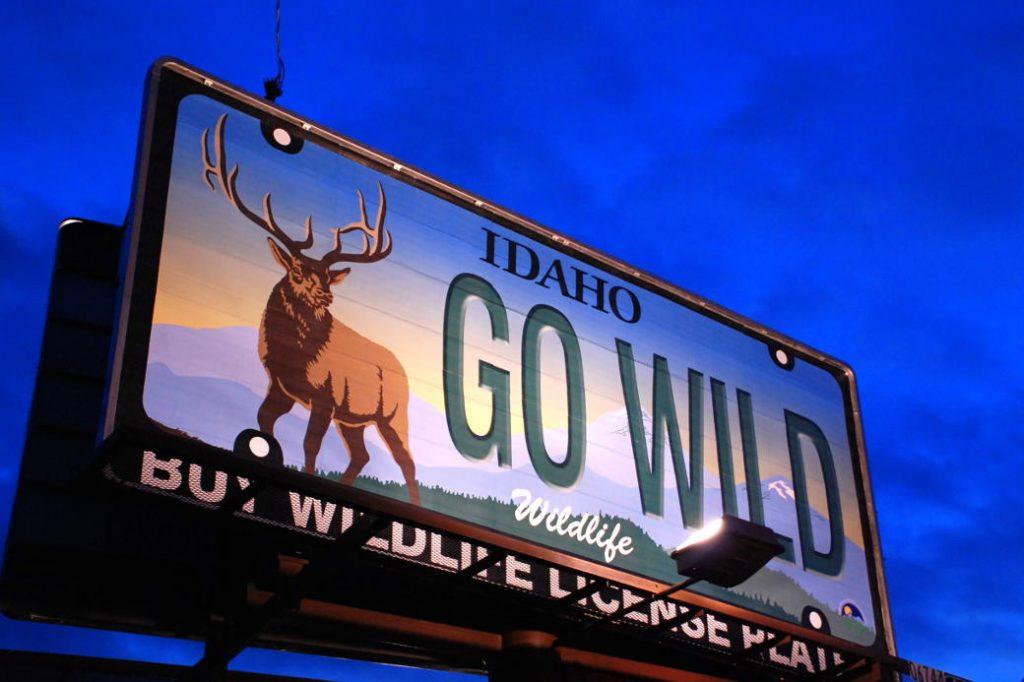 go wild sign