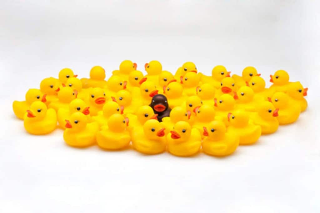 rubber ducks different races
