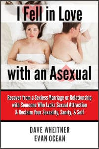 I Fell in Love with an Asexual book cover