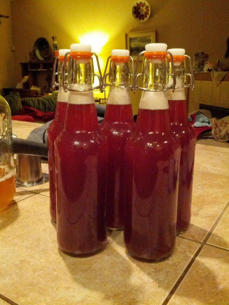 homemade pomegranate kombucha, bottled